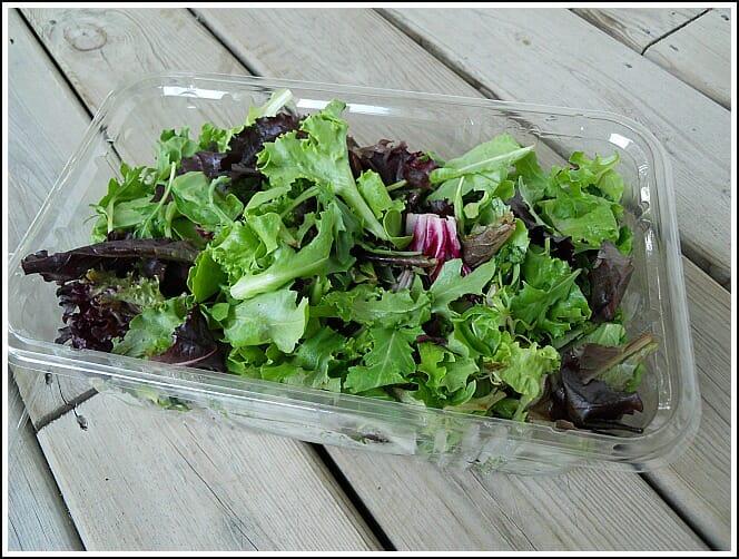 Simple tip how to keep lettuce fresh longer andrea dekker - How to store lettuce from garden ...