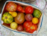 tomatoes thumb