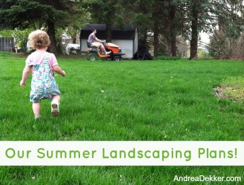 Our Summer Landscaping Plans