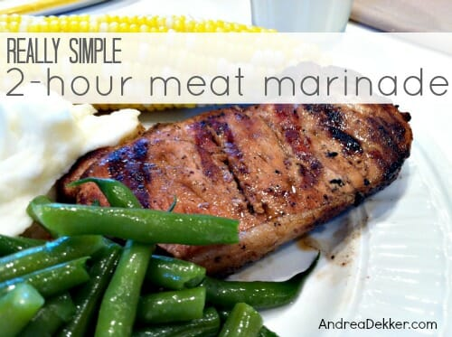 Really Simple Meat Marinade