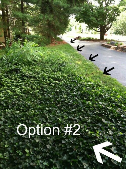 option #2