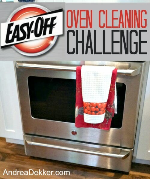 Easy Off Oven Cleaning Challenge