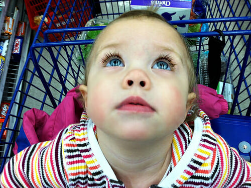 nora in the shopping cart