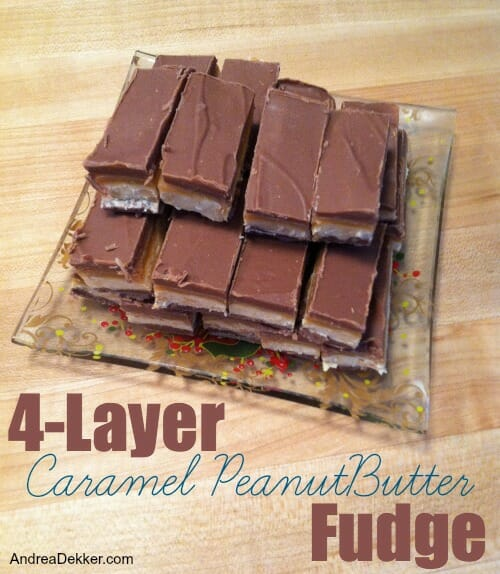 4-layer fudge