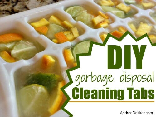 DIY garbage disposal cleaning tabs