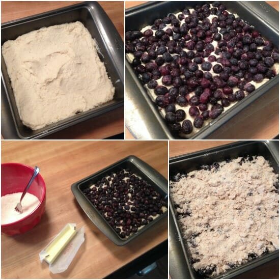 blueberry buckle assembly