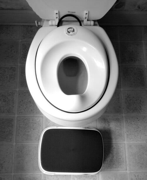 potty seat
