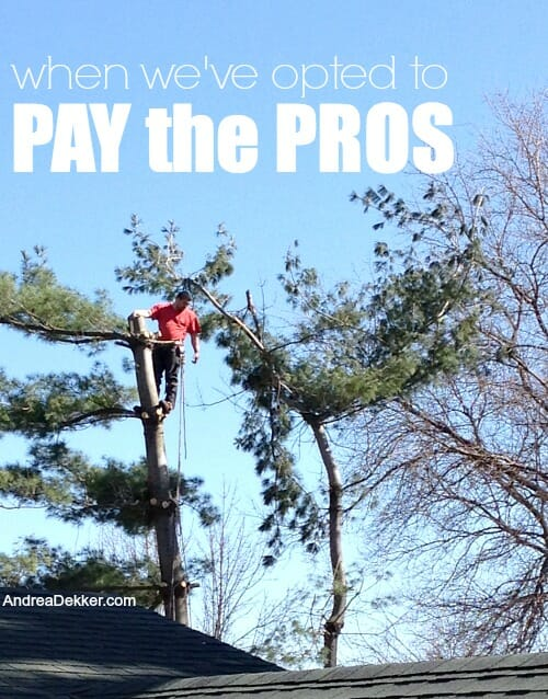 pay the pros