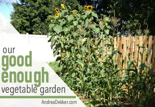 good enough vegetable garden