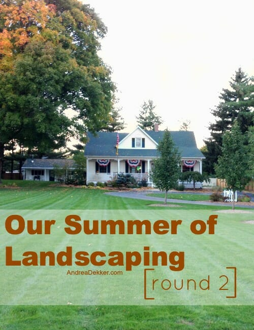 our summer of landscaping