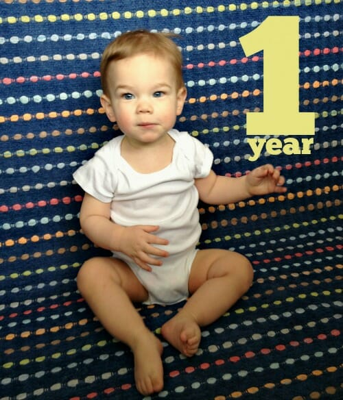 1 year old