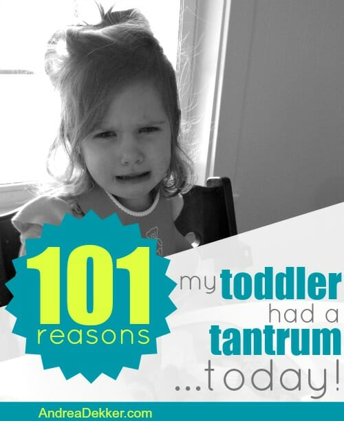 101 reasons my toddler had a tantrum today