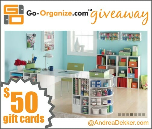 go organize giveaway
