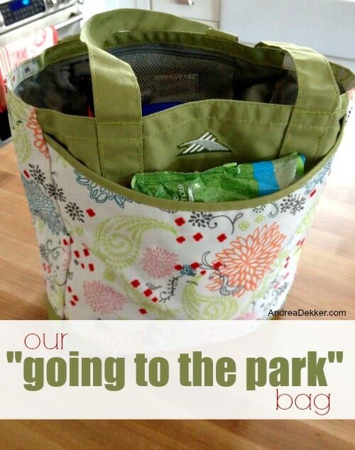 our going to the park bag