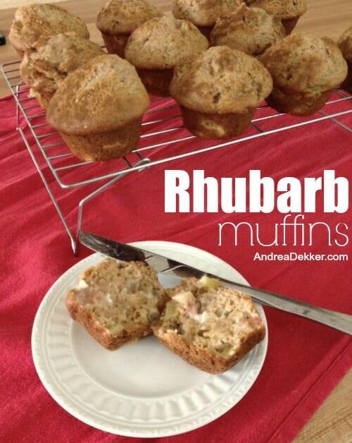 ... Chip muffins , chocolate zucchini muffins , blueberry muffins , etc