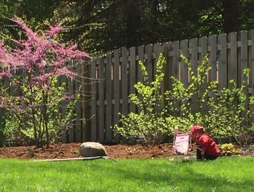 simon picking flowers