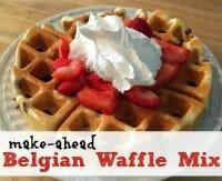 belgian waffle thumb