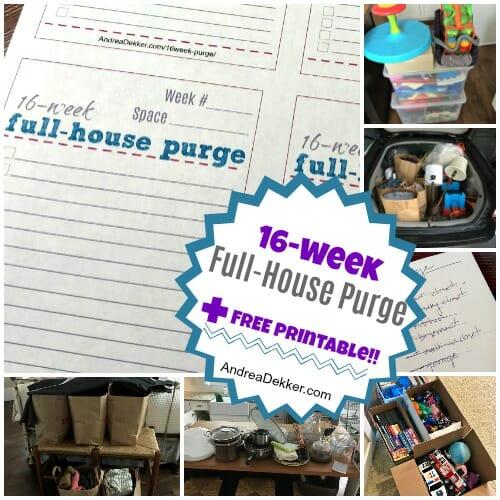 16-week purge