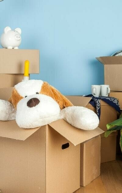 how to purge 100 things from your home today