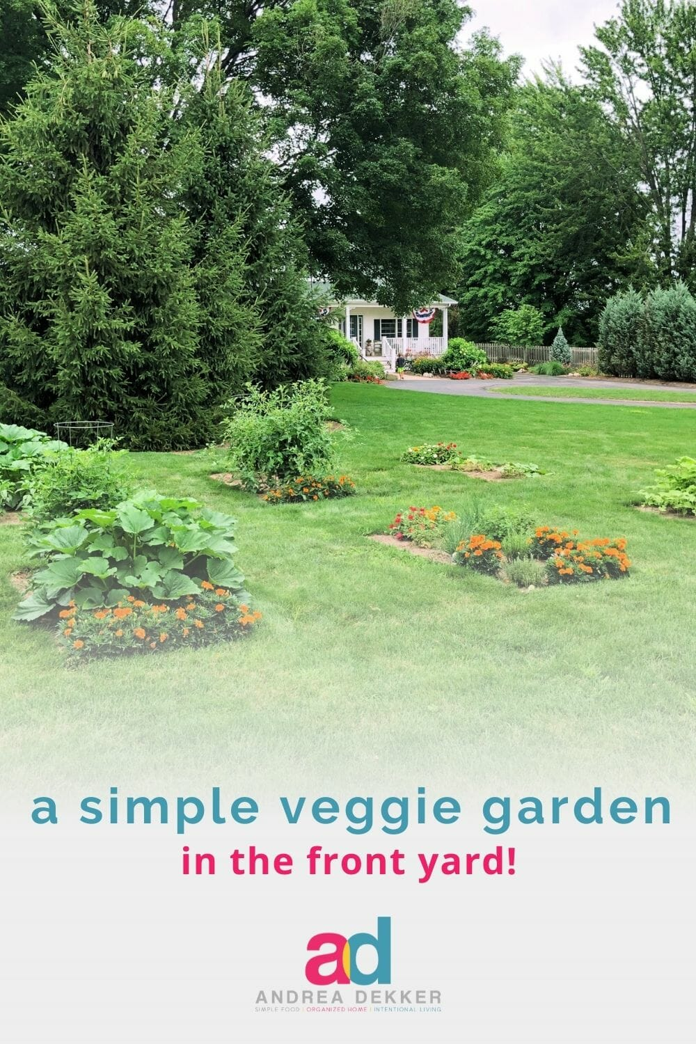 With just a little bit of effort, we created a simple (yet abundant) front yard vegetable garden in one day, for less than $100. See the full transformation! via @andreadekker