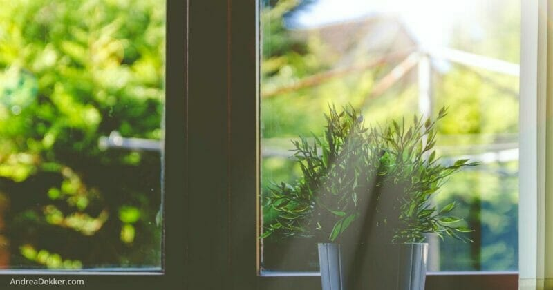 homemade all natural window and glass cleaner
